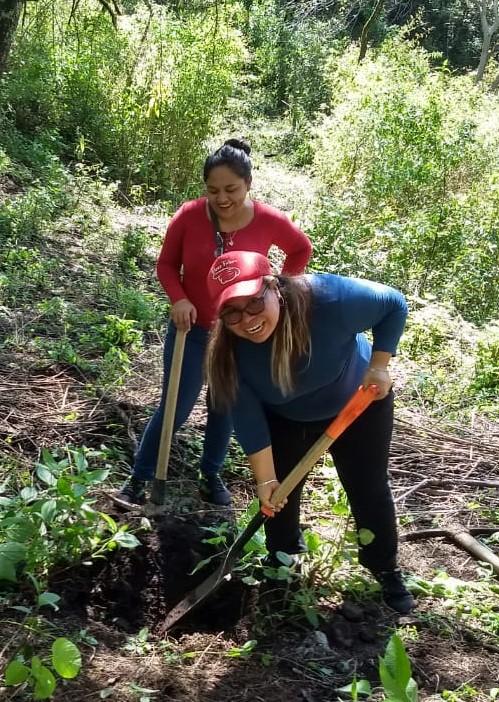Preparación suelo reforestación1
