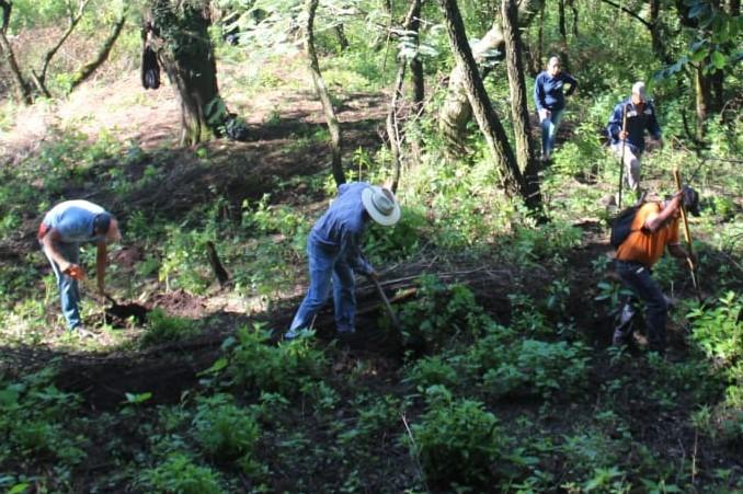 Preparación suelo reforestación2