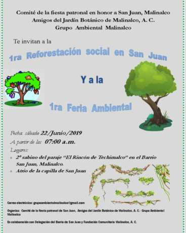 Primera reforestación San Juan